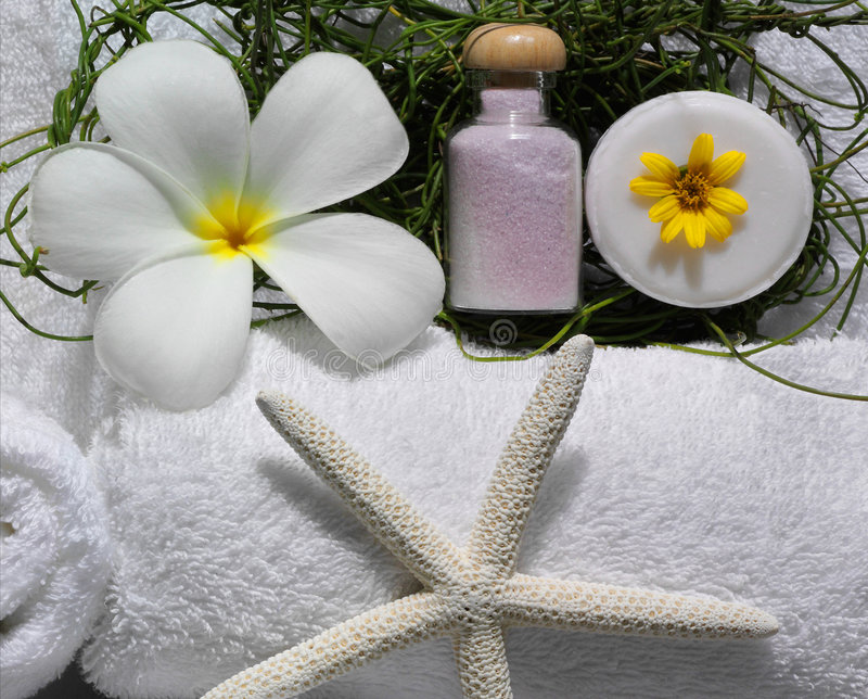 Spa beauty royalty free stock images