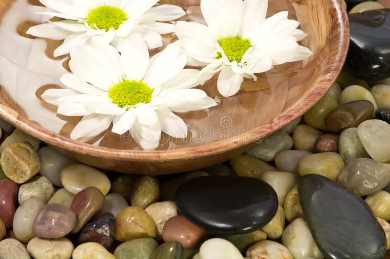 Download Spa bowl stock image. Image of water, relaxation, bowl - 4488419