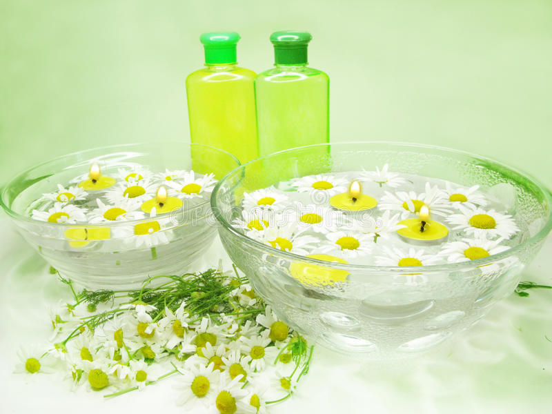 Spa bowl with daisy flowers and shampoo gel stock image