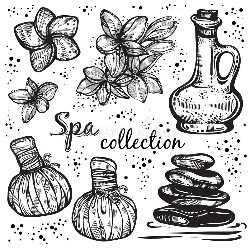 Spa collection. Hand-drawn beautiful elements in linear style. Isolated vector illustration. Natural cosmetics, aroma, oil. Spa collection. Hand-drawn beautiful stock illustration