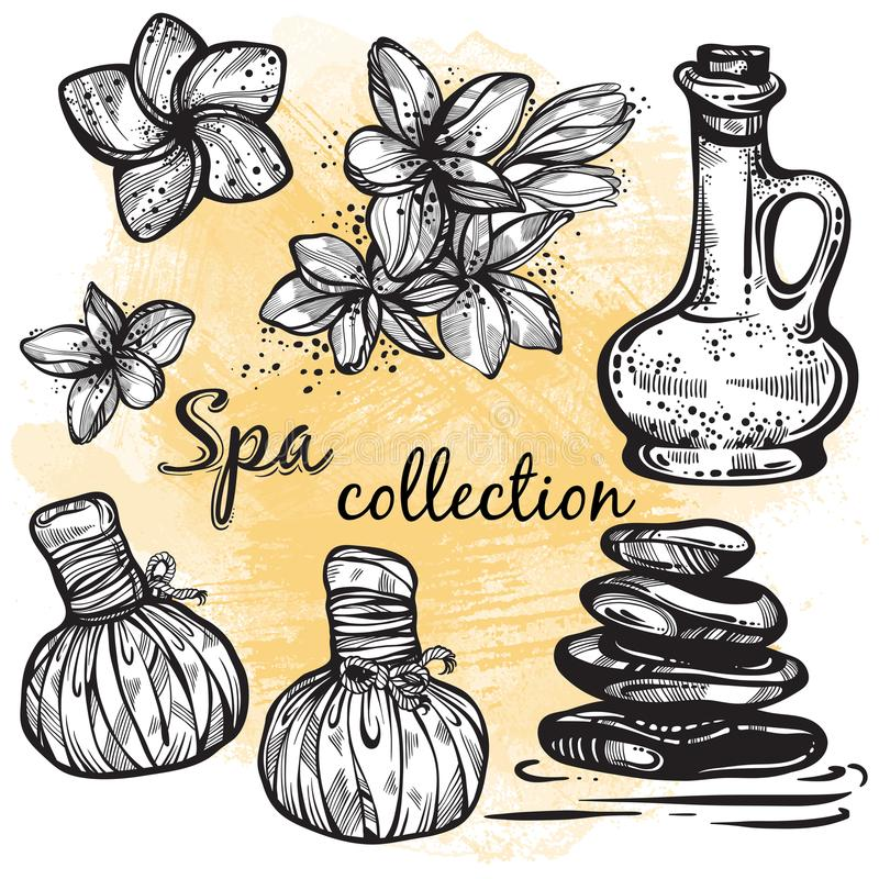 Spa collection. Hand-drawn beautiful elements in linear style. Isolated vector illustration. Natural cosmetics, aroma, oil. Spa collection. Hand-drawn beautiful vector illustration