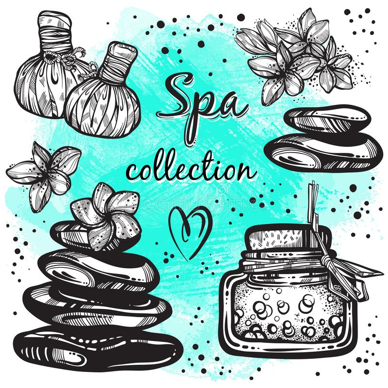 Spa collection. Hand-drawn beautiful elements in linear style. Isolated vector illustration. Natural cosmetics, aroma, oil. Spa collection. Hand-drawn beautiful royalty free illustration