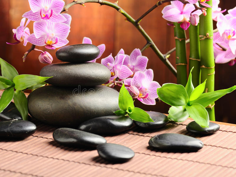 Download Spa concept stock photo. Image of detail, aroma, aromatherapy - 20166392