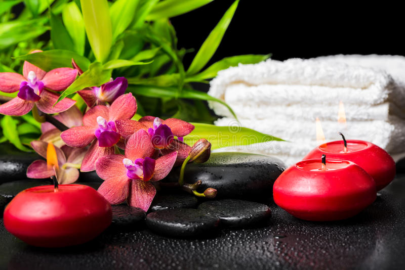 Spa concept of blooming twig red orchid flower, phalaenopsis. Bamboo with dew, towels and candles on zen basalt stones, closeup royalty free stock photos
