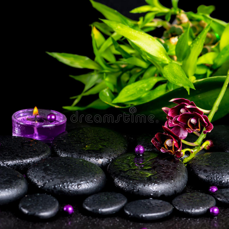 Spa concept of flower orchid, phalaenopsis, zen basalt stones wi stock photography