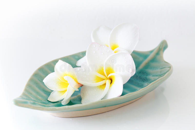 Spa concept. Image spa concept with flower and white background stock photos