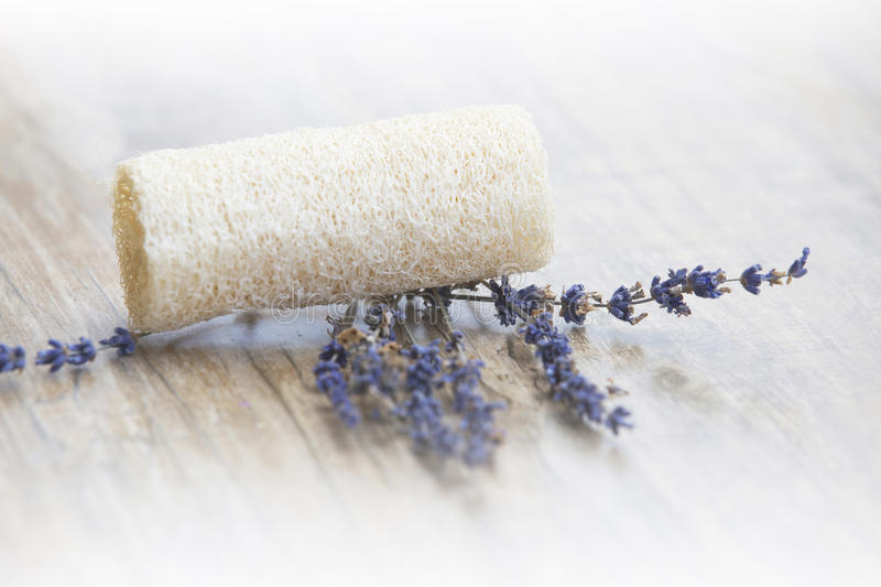 Spa concept. Lavender resort spa concept, zen background royalty free stock photography
