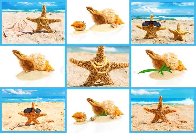 Spa concept with seashells, set. Spa concept with seashells, starfish in the sand at the beach, set stock image