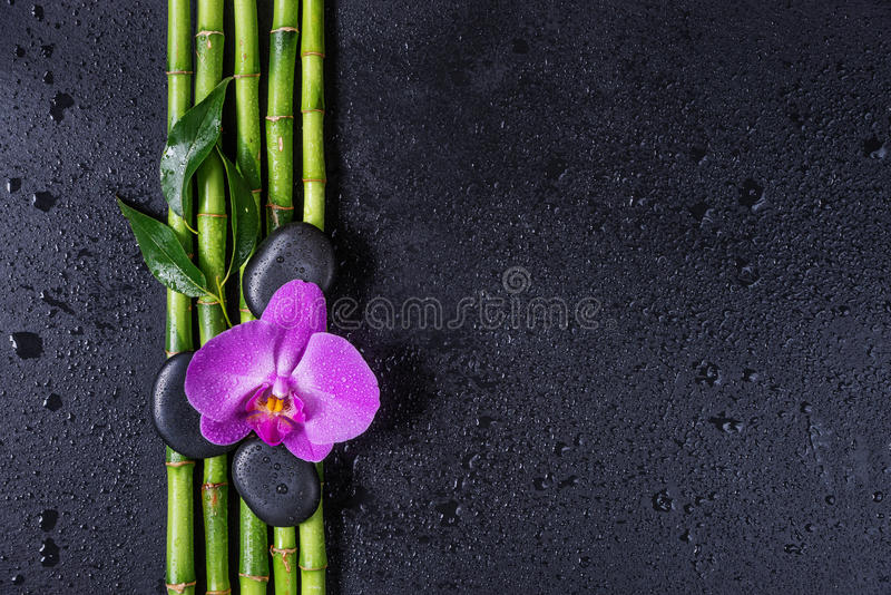 Spa concept with zen stones, orchid flower and bamboo stock photos