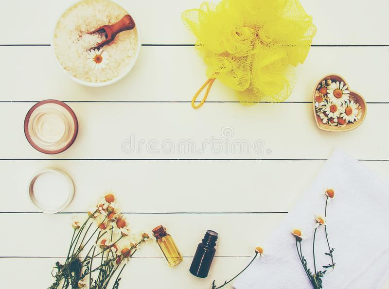 Spa and cream with chamomile extract. stock photos