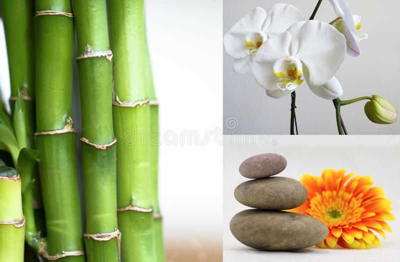 Spa Day Collage. Concept with smoothing orchids, bamboo, stones. Zen energy
