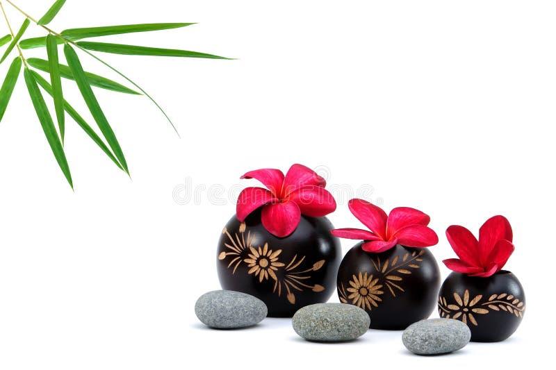 Download Spa deco stock image. Image of fragrance, bathroom, blossom - 10946847