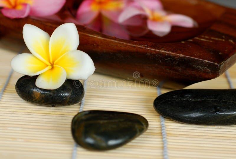 Download Spa Deco stock image. Image of aroma, symbol, moisturize - 6985865