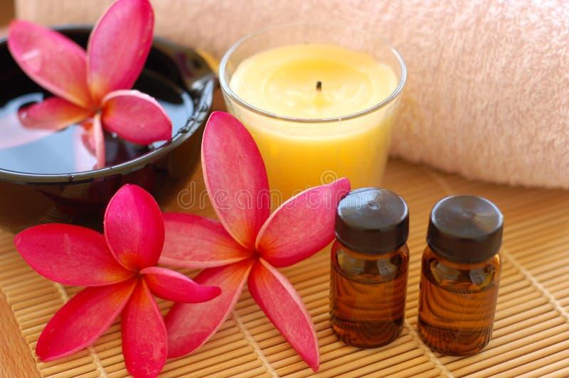 Download Spa Deco stock photo. Image of plumeria, relaxation, aromatherapy - 8864218