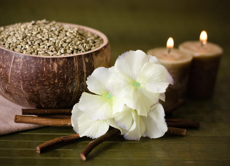 Spa on green bamboo stock photography