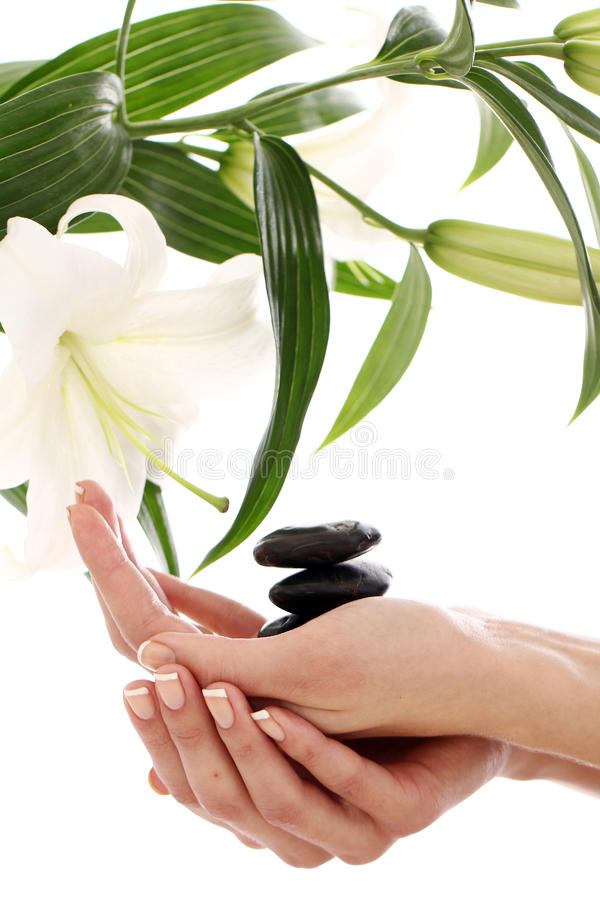 Spa hands over white background stock images
