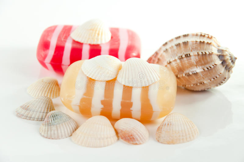 Download SPA kit, soap and shells stock image. Image of accessories - 21605625