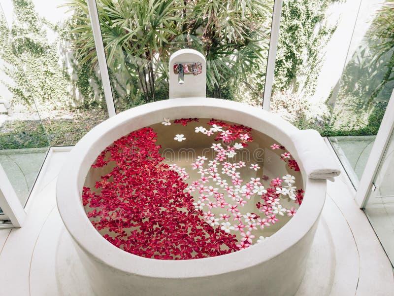 Spa luxury bath. Luxury hotel bath with tropical flowers, spa decoration royalty free stock photography