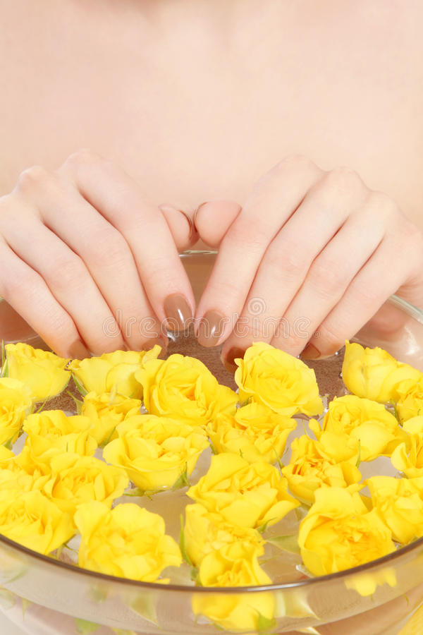 Download Spa manicure stock image. Image of petals, skincare, woman - 22987719