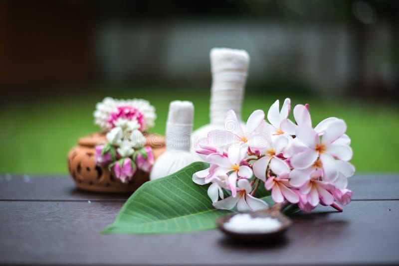 Spa massage compress balls royalty free stock image