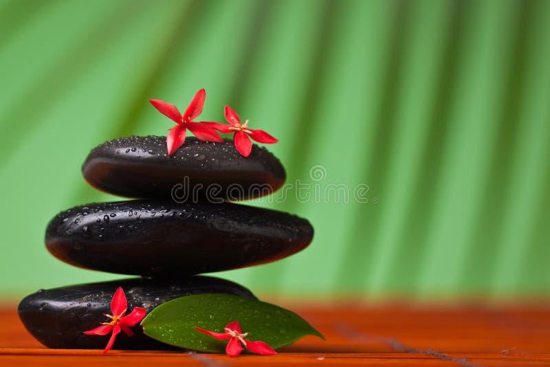 Spa & massage still life : stock photos
