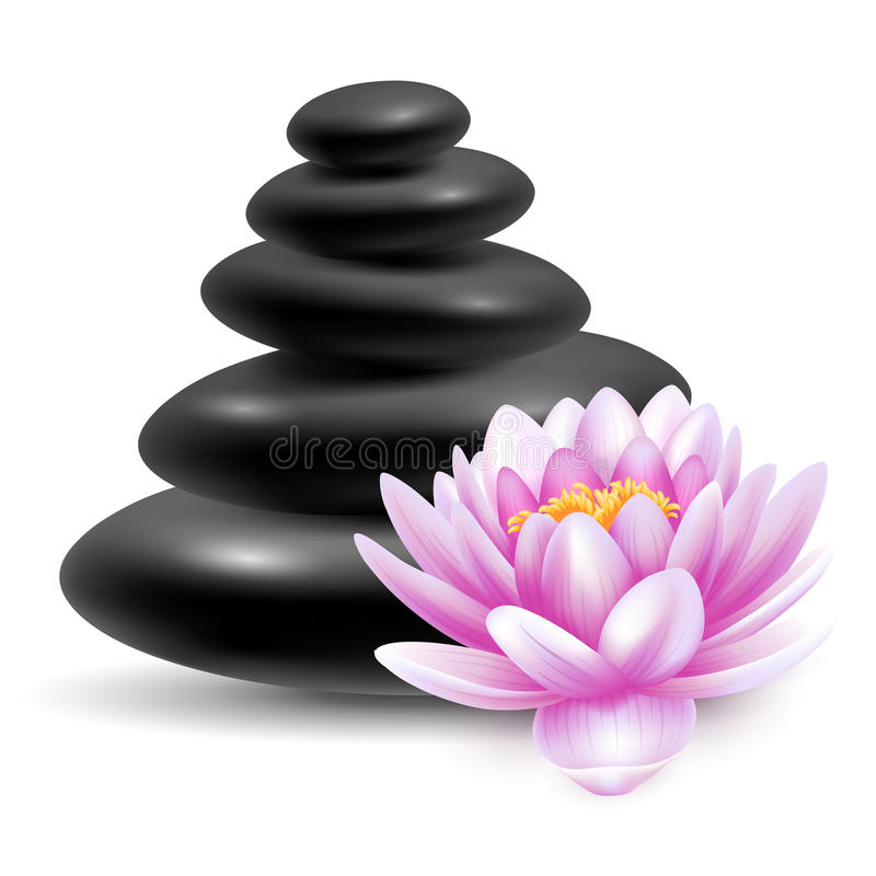 Spa massage stones. Spa still life with black massage stones and pink lotus flower. Vector illustration. Isolated on white background royalty free illustration