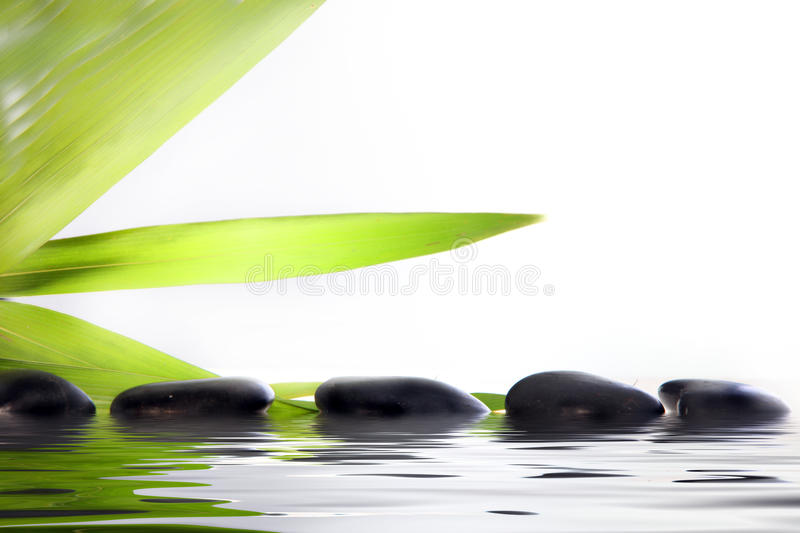 Spa massage stones in water royalty free stock image