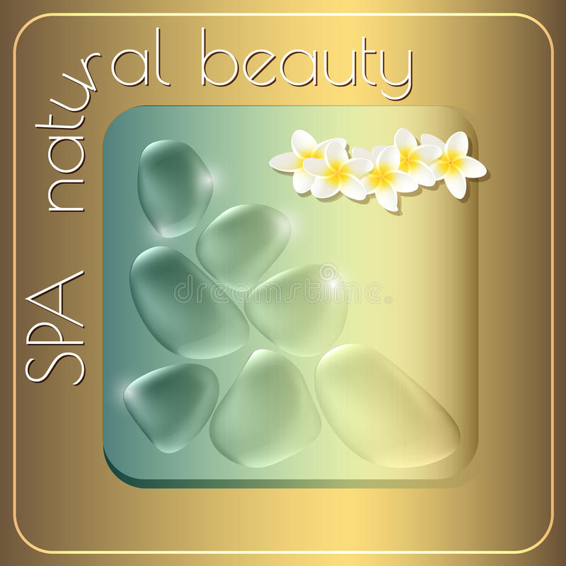 Spa natural beauty theme vector illustration. With drops and exotic flowers on gold background royalty free illustration