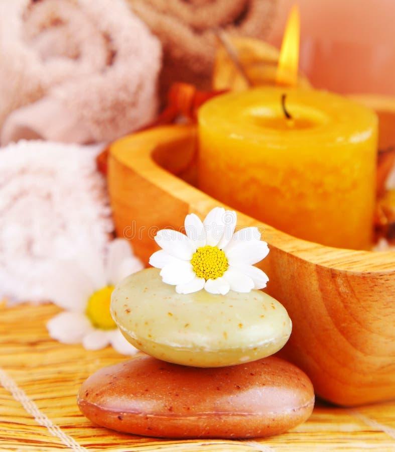 Download Spa organic soap stock image. Image of health, leaf, meditation - 26241571