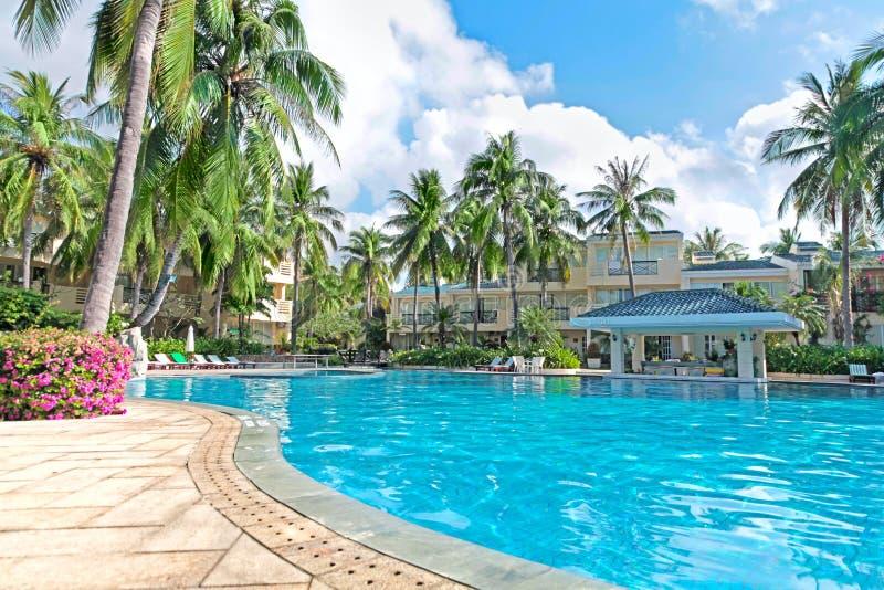 Download Spa resort water pool palm stock photo. Image of image - 28265382