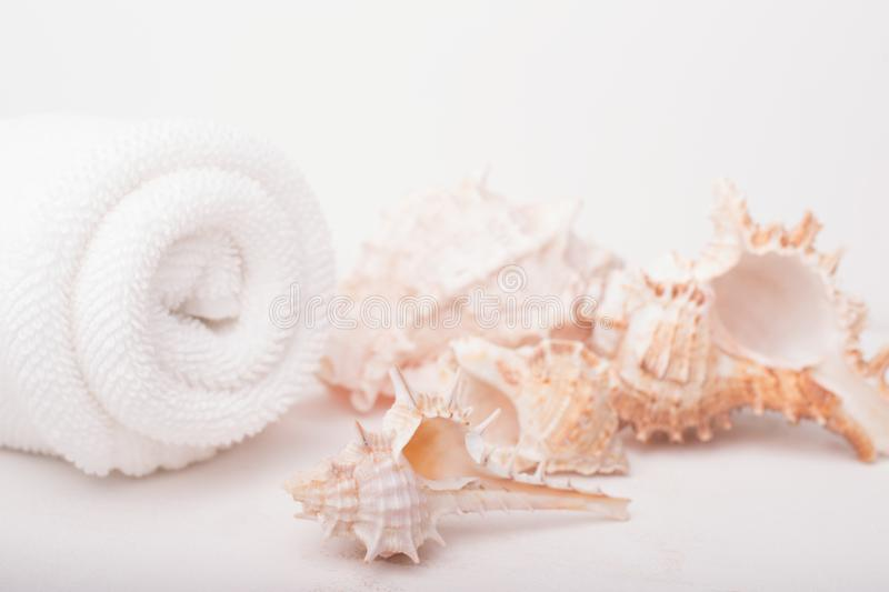 Spa salon concept with rolled white towel and seashells on white wooden background. Spa treatments. Spa background. Space for a te. Xt stock photo