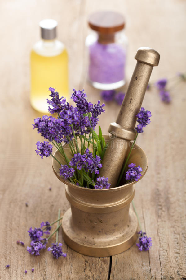 Download Spa Set With Fresh Lavender Stock Photography - Image: 30833682