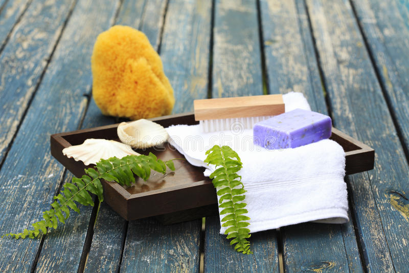 Download Spa Setting stock photo. Image of freshness, conch, health - 26546050