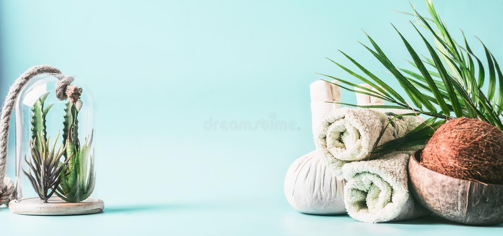 Spa setting background. Massage treatment. Rolled towels, compress balls with coconut, palm leaves and various succulent plants in. Glass at light blue stock photos