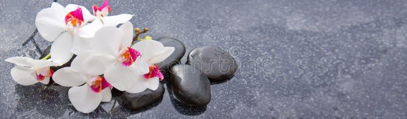 Spa stenar och vit orkidé på grå bakgrund royaltyfri foto