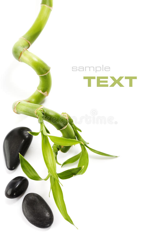 Spa still life. Green bamboo and pebbles on white (with sample text stock photo