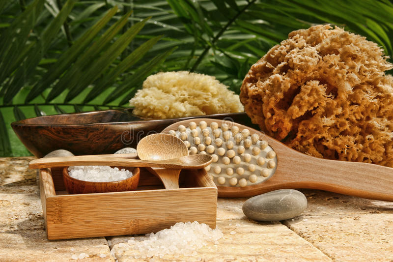 Download Spa Still Life With Bath Salt And Brushes Stock Photo - Image: 25248894