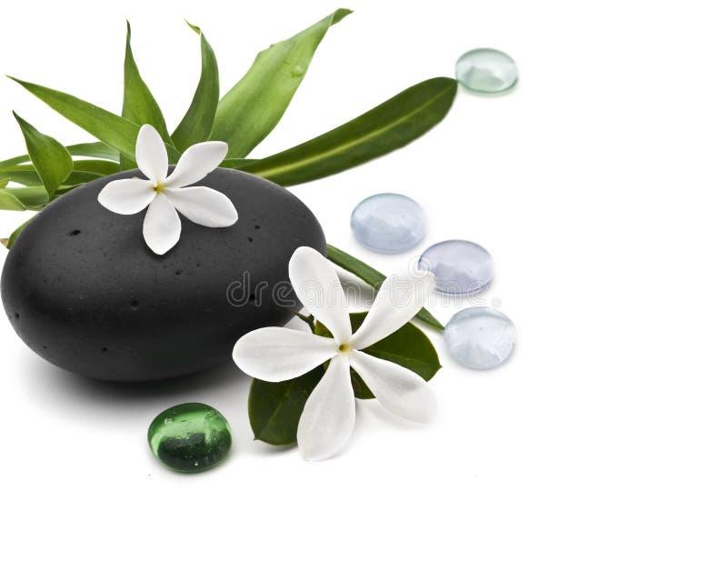 Spa still life with frangipani stock photography