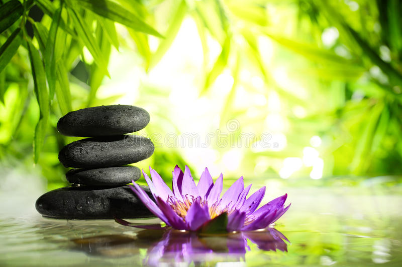 Spa still life with lotus and zen stone on water royalty free stock image