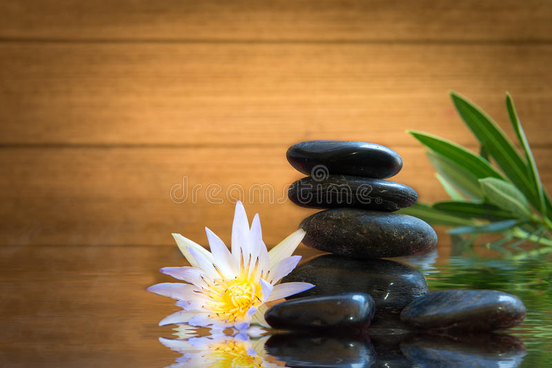 Spa still life with water lily and zen stone stock photos