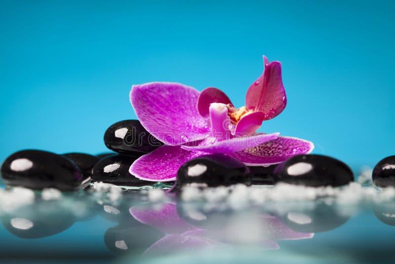 Spa stilleben med den rosa orkidén och svartzenstenen royaltyfri bild