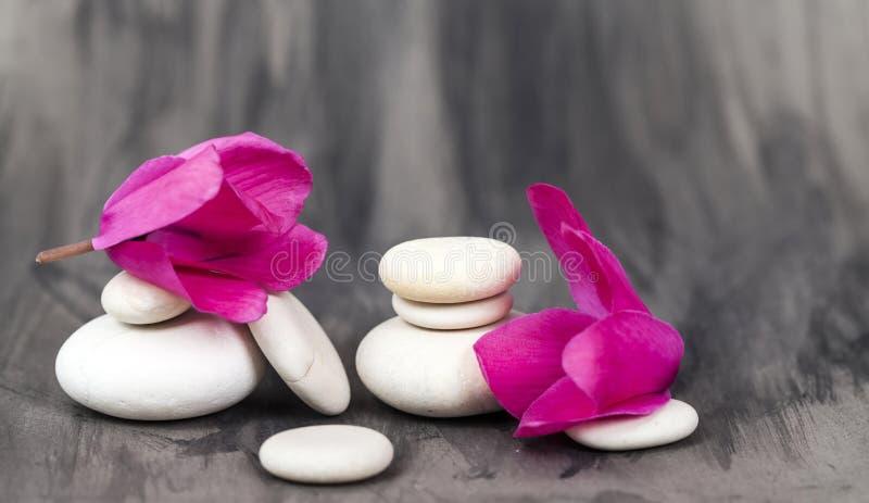 Spa stilleben med den rosa orkidén och vitzenstenen royaltyfria bilder