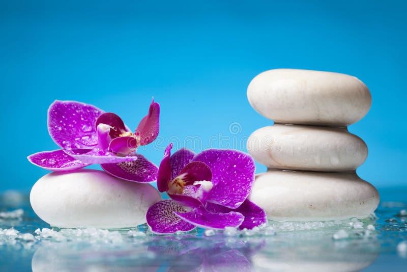 Spa stilleben med den rosa orkidén och vitzenstenen i en serenit arkivbilder
