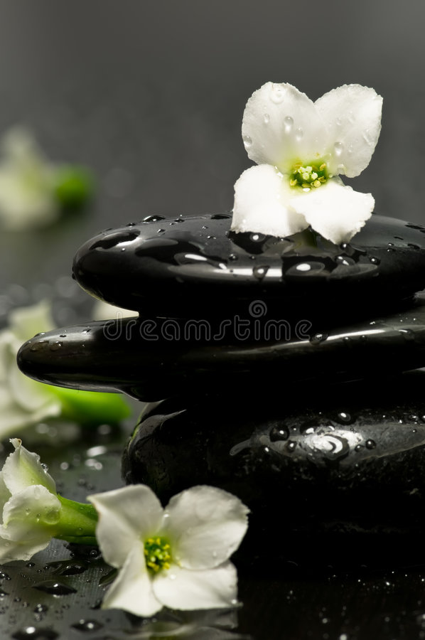Spa stones and flowers stock photography