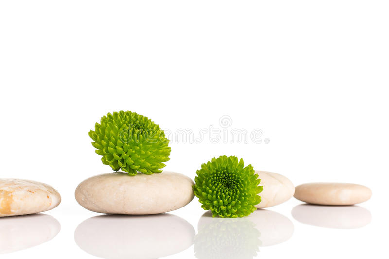 Spa stones. stock photos