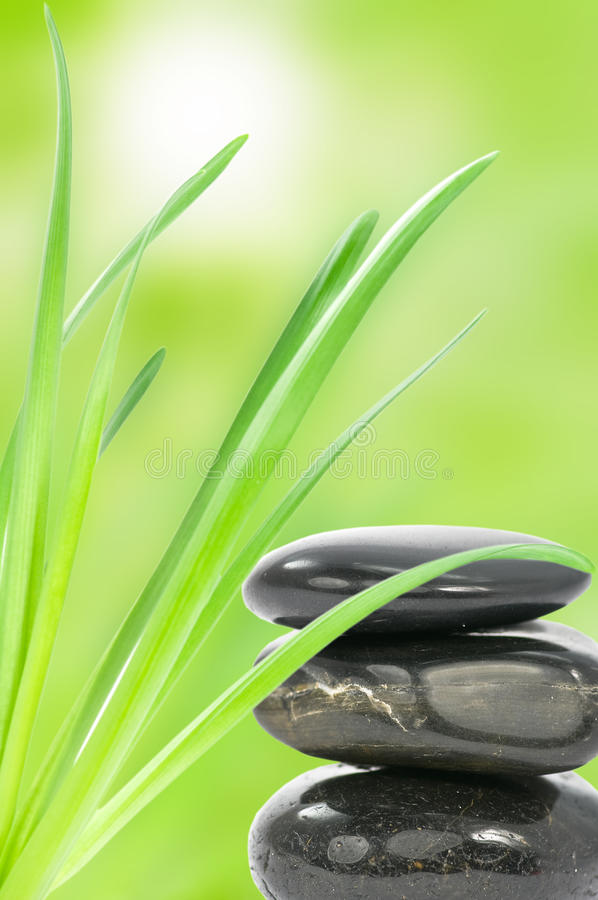 Spa stones and green leaves royalty free stock image