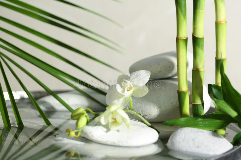 Spa stones, orchid and bamboo branches in water royalty free stock photo