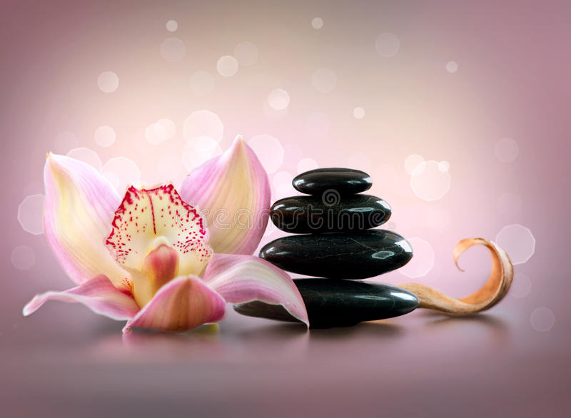 Spa Stones and Orchid Flower royalty free stock image