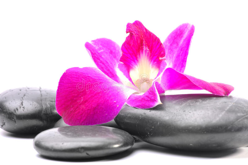 Spa Stones and Orchid flowers. Over white stock image
