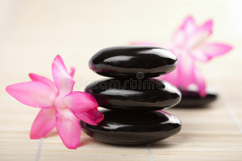 Download Spa Stones And Pink Flower Stock Image - Image: 9975141